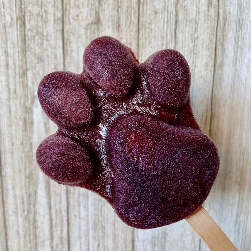 Nick and Fennec's Pawpsicle (Popsicle) Recipe from Disney's Zootopia.